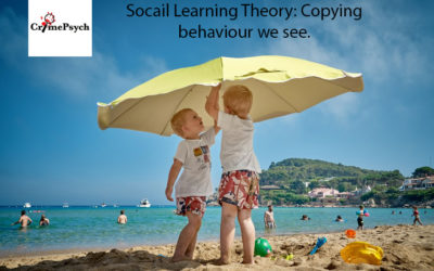 How we learn according to social learning theory