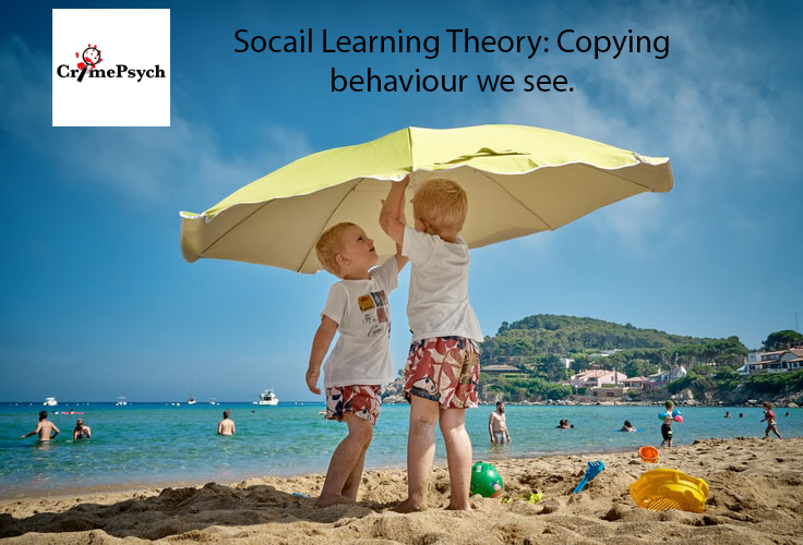 Social Learning Theory: Copying what we see