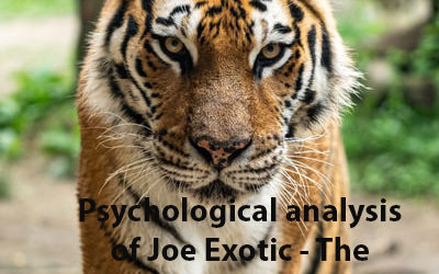 Psychological analysis of Joe Exotic the Tiger King
