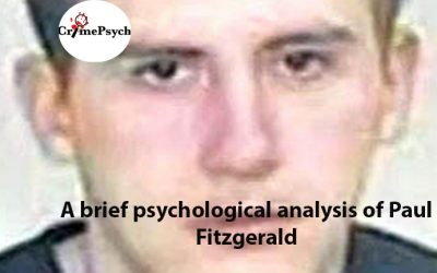 Psychological analysis of Paul Fitzgerald